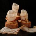 ventreche de porc noir de Bigorre du collectif PADOUEN