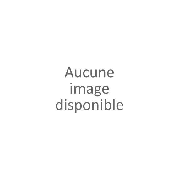 ANDOUILLETTE TRIPLE CHAMPIONNE D'EUROPE - JOEL CADET